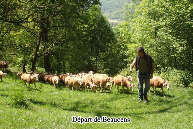 Journ es professionnelles fermes ouvertes innov 39 ovines site d 39 informations en ligne sur - Chambre d agriculture tarbes ...